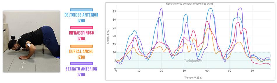 grafica actividad muscular variantes de flexiones cuadrupedia